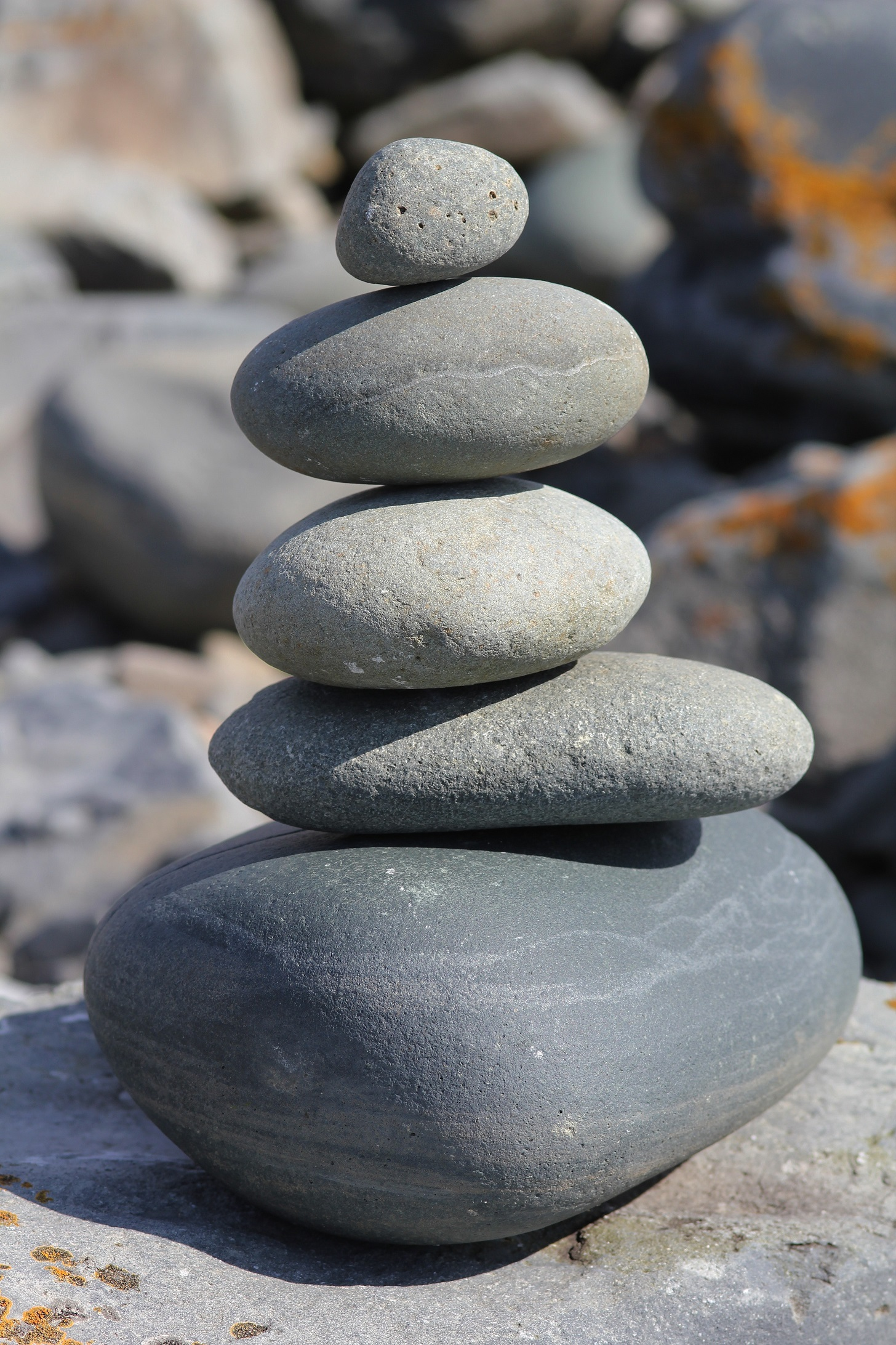 balanced life - 5 useful Tips for Hormonal Balance